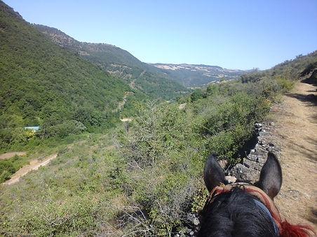 Sentiers équestres de l'Aveyron