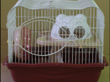 Hamster Cage M011