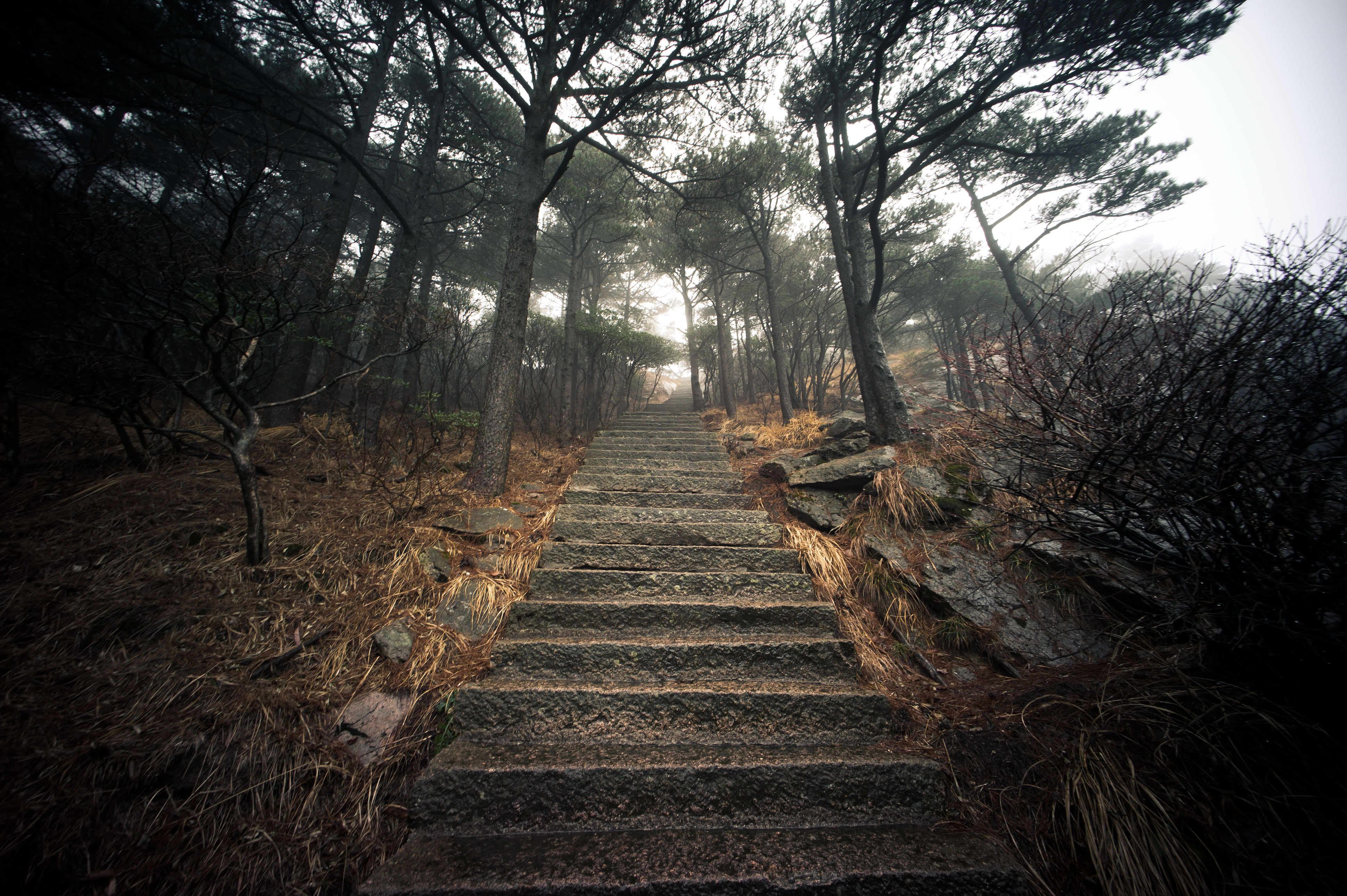 Flickr - Stairs - Huangshan, China