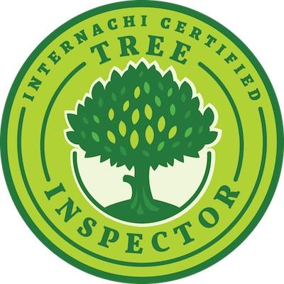 Tree Inspector