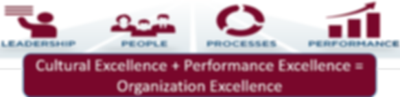 Organization Excellence, business process management