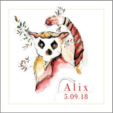 Faire part de naissance Alix