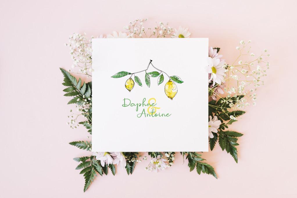 Lemon Mockup-papierananas.jpg