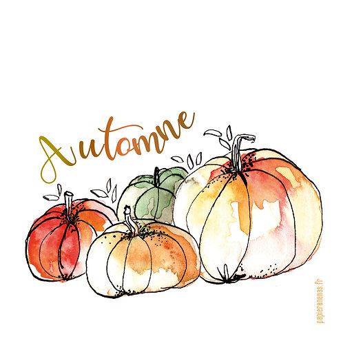 """Carte postale collection d'automne """"Courges d'automne"""""""