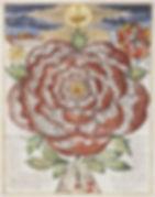 Bohemia Rose_WEB.jpg