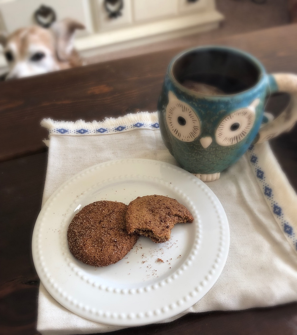 I think the dog likes the cookies, too. And no, I didn't give her one. ;)