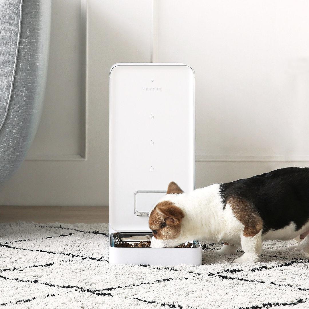 Smart pet feeder.jpg