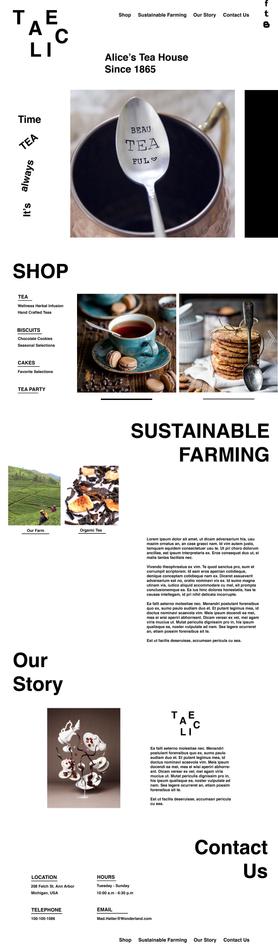 Website Design: Modernistic