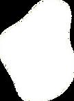 Forme pleine ronde blanche.png