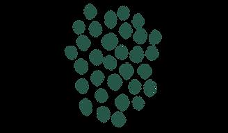 Trame pleine verte foncé (2).png