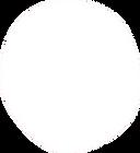 Forme pleine ronde blanche (1).png