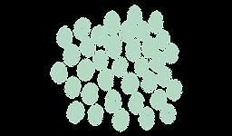 Trame pleine verte clair (2).png