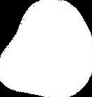Forme pleine ronde blanche (4).png