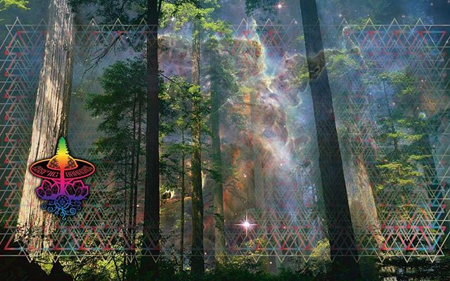 another 'real' cosmic branches #redwoods in #space !!! #photoshop #surfacepro4 #illustrator #cosmicb