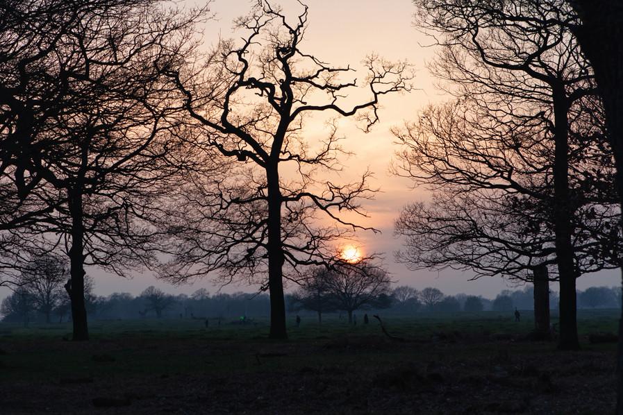 Sanity, Sara Lacuesta photography, documentary photography, London based photographer, fotografia documental 51.jpg