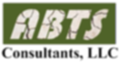 LOGOS New Text Fill Modified.png