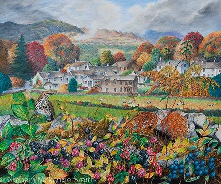 Near Sawrey in Autumn