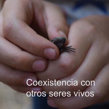 Coexistencia con otros seres vivos