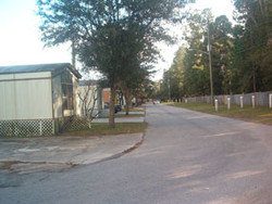 StreetScene5A