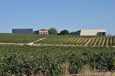 pago de los capellanes winery spain wine