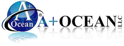 A+ Logo Trademarked .jpg