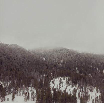 Snowy_threesII.jpg