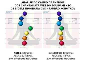 biowell-chakras.png