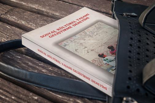Sosyal Çalışma Yayınları