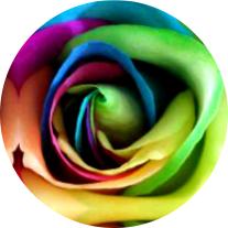 Rosa - Arte Fractal