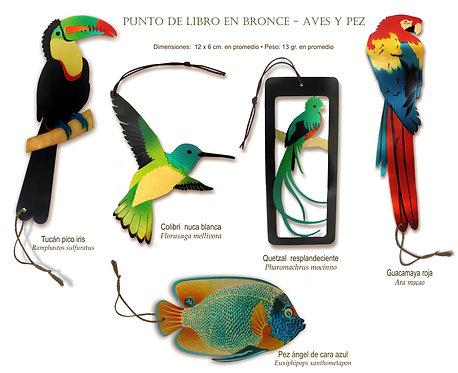 Aves y Pez