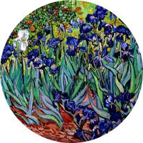 Irises - Vincent van Gogh