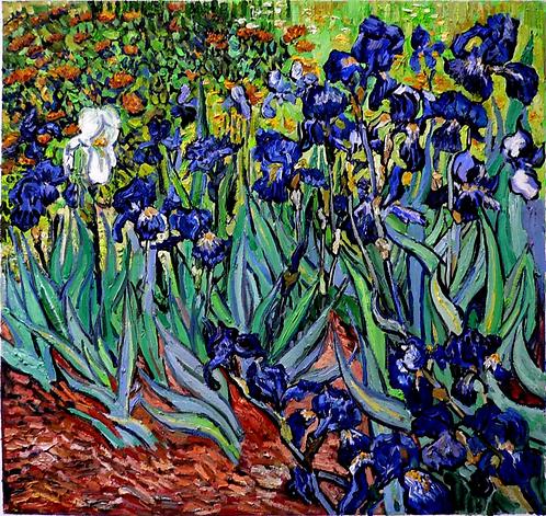 Irises (extracto Nº 2)