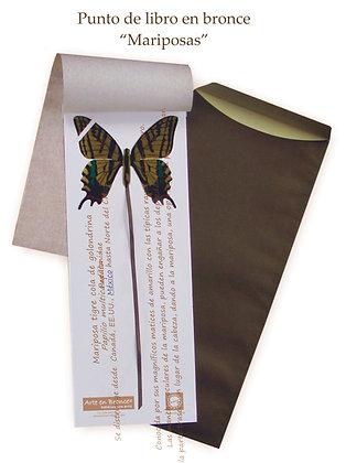Mariposa Tigre Cola de Golondrina