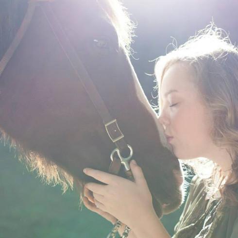 Horse MediaKAB.jpg