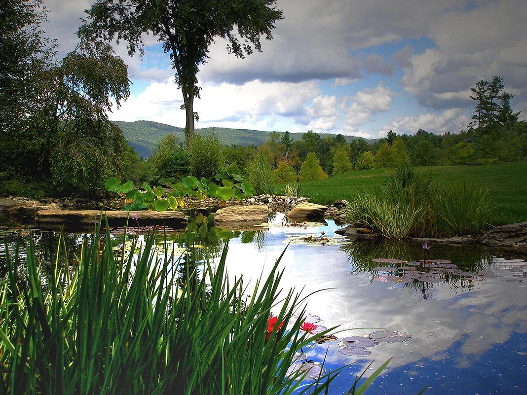 Yale Pond 6 copy.jpg