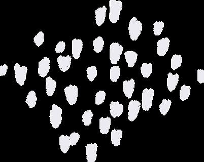 Plante 4 couleur - Points gris - Kupoï