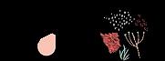 Logo Kupoï