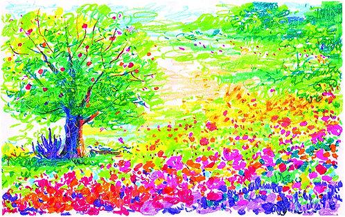 Crayola Portfolio Water Soluble Oil Pastel set    千色樂水溶性油粉彩 套裝系列
