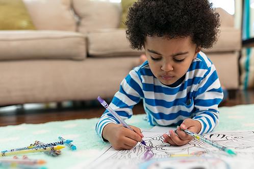 Crayola Twistables Colored Pencils set  千色樂轉動式筆芯顏色套裝系列