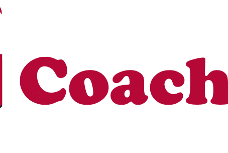 Why CoachNet?