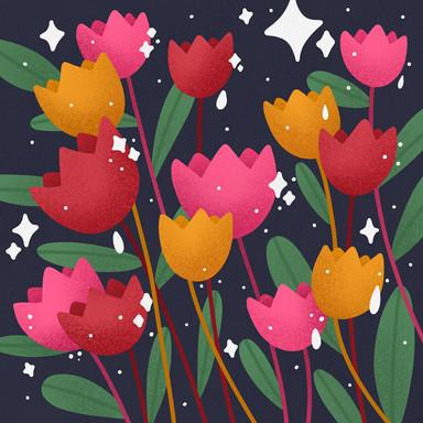 Fresh Tulips For Ya