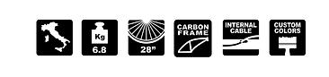 pittogrammi saettacarbonpro.png