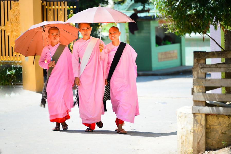 Filles moines BIRMANIE.jpg