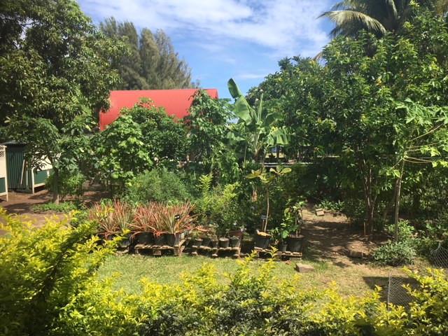 Centre Papa Nui