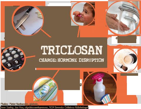 le triclosan : interrupteur d'hormones