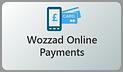 OnlinePaymentsOptional.png