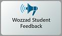 StudentFeedbackOptional.png