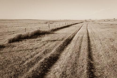 """""""Quiet Road"""""""