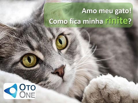 Rinite e Gato.JPG