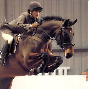 Young Event Horse Out Show Jumping